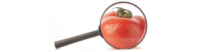 tomateàlaloupe